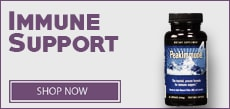 Immune Support category link