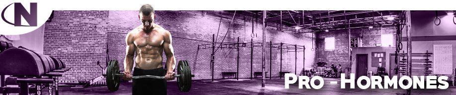 Muscle Builders