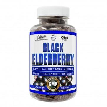 Black Elderberry | Buy Black Elderberry