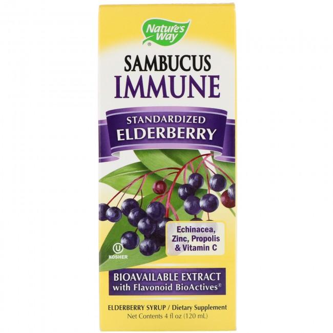 Sambucus Immune System Syrup 4fl Oz By Nature's Way