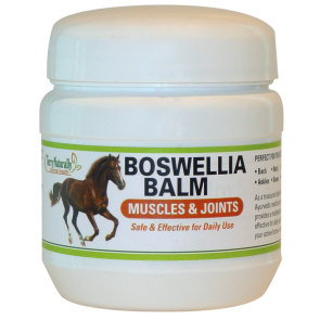 Terry Naturally Boswellia Balm Muscle and Joints