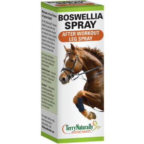 Boswellia Spray After Workout Leg Spray
