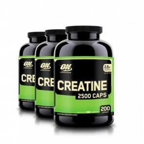 Optimum Nutrition Creatine | ON Creatine