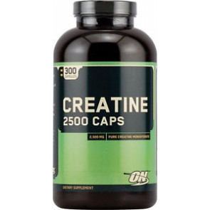 Optimum Nutrition Creatine 2500 300 Capsules
